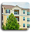Three story apartment building with tree in front